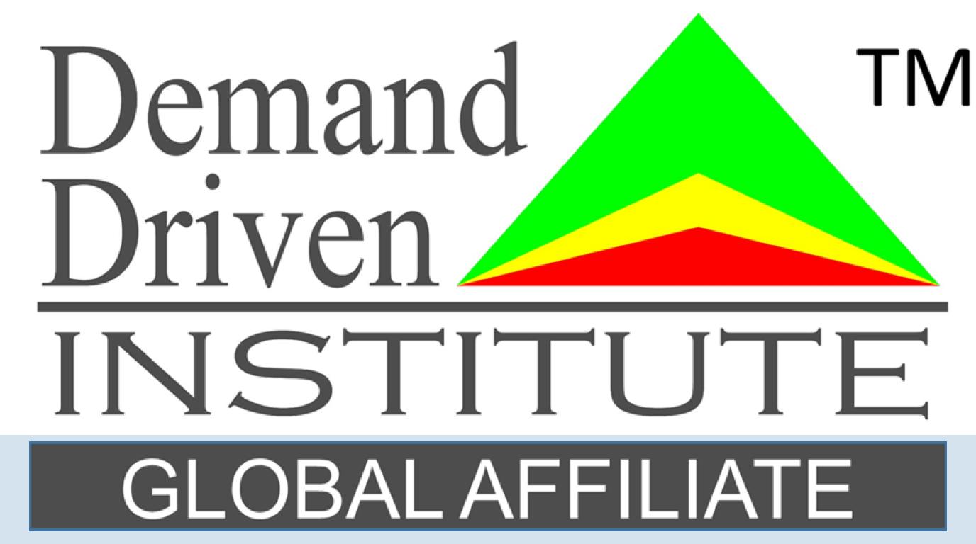 DDMRP Partner Logo